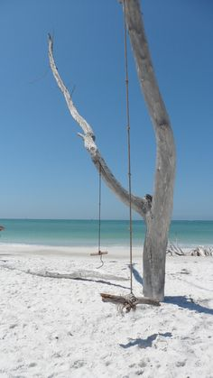Swing on a Florida beach
