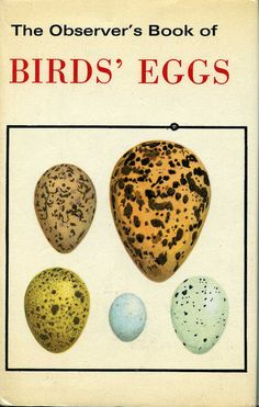 The Observer Book of Birds' Eggs / my Uncle had this