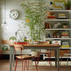 dining rooms, dine room, chairs, kitchen, bamboo plant decor ideas