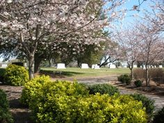 Montlawn Memorial Park  2911 S Wilmington S  Raleigh  Wake County  North Carolina  USA  Postal Code: 27603  Phone: (919) 772-1073