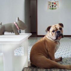 u sit like Minnie
