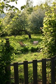 A small orchard... filled with apples, damsens, and maybe a few other fruit-bearing trees... and taking the time to enjoy it.