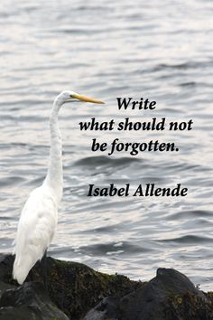 """Write what should not be forgotten."" -- Isabel Allende – Writers know the deep imperative and power of words.  Explore tips and quotes on writing inspiration at http://www.examiner.com/article/writing-inspiration-from-water-and-nature-tips-and-quotes"
