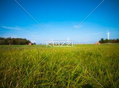 grass field with blue sky in the background - View of grass field with Blue sky in the background.