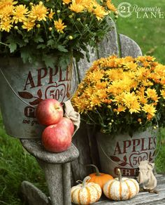 Flowers aren't the first thing I think of for fall decor, but these stenciled buckets with yellow flowers & pumpkins are perfect!