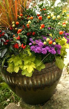 Fall Container Garden Plant List: 1. Kale; 2. Ornamental peppers; 3. Pansies; 4. Violas; 5. Cabbage; 6. Chrysanthemums; 7. Heucheras; 8. Ornamental grasses; 10. Ivy; 11. Rudbekia; 12. Celosia; 13. Sedums fall pot, garden idea, ornament pepper, fall container gardens, container gardening, garden plants
