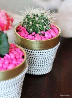 Hi Sugarplum | DIY Succulent Pot