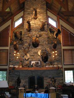 Hunting trophy rooms on pinterest trophy rooms for Trophy room design