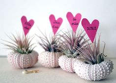 I hope that someday I am organized enough to make these for my girlfriends for Valentines Day.
