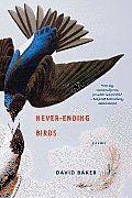 Never Ending Birds by David Baker