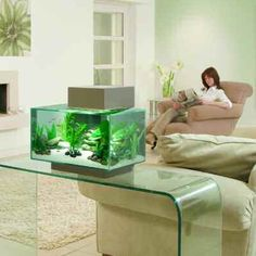 inspirational Design: Living Room - Fluval Edge 23L Silver.