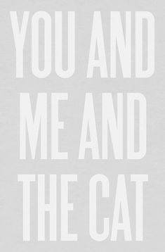The Cat and you and me :)))
