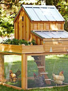 This chicken coop has its own raised herb and veggie garden