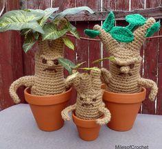 Mandrakes!