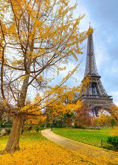 The Eiffel Tower, Paris in Autumn