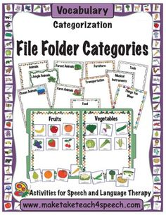 File folder activities for categorization.  13 categories and over 60 pictures!