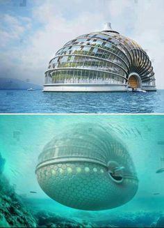 Ark Hotel in China