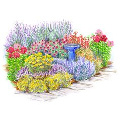 Easy-Care Perennial Garden  Lavender, yarrow, and purple coneflower are beautiful, drought-resistant plants typically ignored by deer, rabbits, and other critters. This garden pairs them with other perennial favorites for a summerlong display of color.    Garden size: 12 by 12 feet.  Download this plan now.