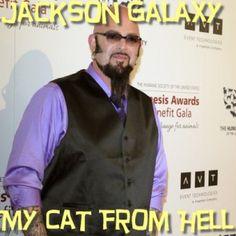 "Ellen: Jackson Galaxy ""Cat Daddy"" Review & Tess Meets Casting Director"