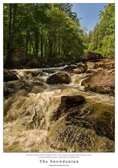 The Afon Llugwy which flows through the gorge above Betws-y-Coed in Snowdonia