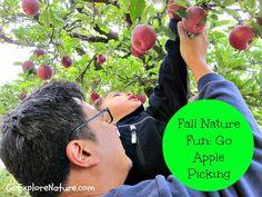 Fall Nature Fun: Go Apple Picking