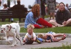 Dog walking the children