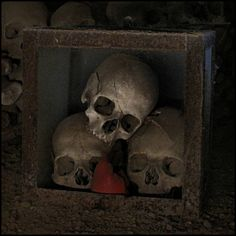 flame by Incognita Nom de Plume, via Flickr  Skulls in the Fontanelle Cemetery Caves, Naples, Italy