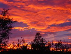 Desert sunset - the colors really are this vivid.