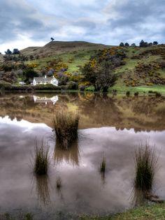 Otago Peninsula, New Zealand.