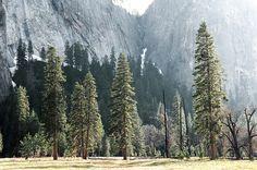 Yosemite National Park nation park, outdoor, natur, national parks, beauti, place