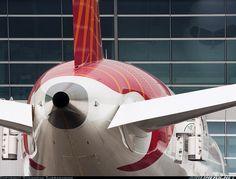 Boeing 787-8 Dreamliner, Air India