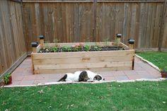 backyard makeover, raised vegetable garden
