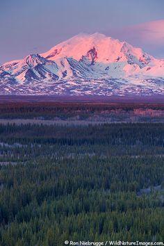 Monte Drum, Wrangell-St Elias National Park, Alaska.