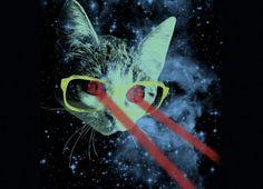 CyberSpace Kitten.