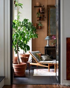 In a Manhattan loft apartment, a relaxing solarium features a Hans Wegner chaise longue with cushions covered in a Rogers & Goffigon linen.