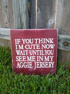 How cute is this? Gig 'em, Aggies!