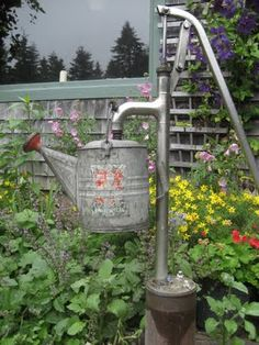 Water can and a well pump
