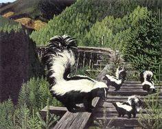 Google Image Result for http://www.wildlifedamagecontrol.net/images/skunks.jpg