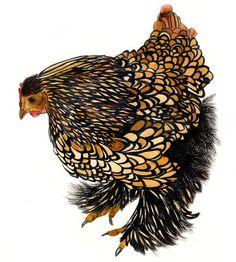 bantam chicken watercolor