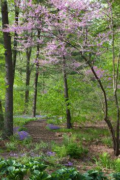 Chanticleer Garden - Wayne, PA Probably best in spring!