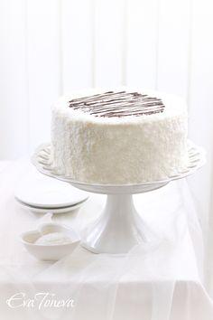... chocOlate coconut cake ...