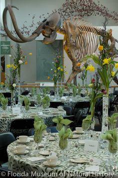 The Central Gallery, mammoth and monarch butterfly migration are the perfect backdrop for a spring dinner event. central galleri, monarch butterfli, spring dinner, perfect backdrop, butterfli migrat, dinner event