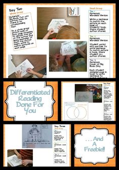 A Differentiated Kindergarten: Look what I found . . . Differentiated Reading Done For You and a FREEBIE!