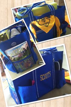 Thirty-one scouts bag