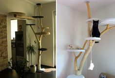 Modern Cat Trees from the Slovak Republic
