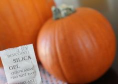 Fun tip: Extend Pumpkin Life with Silica Packet!