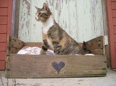 pallet project, cat beds, pallet beds, diy furniture, wooden pallets