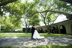 After Wedding Photos in the Paddock