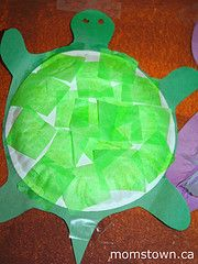 Another idea for you Amanda and Byron!  Tissue paper turtle