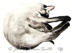 Kitty Sleeping 2 Fine Art Print by ArtByJulene on Etsy, $15.00